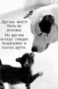 Віта Кордонська, 15 мая 1989, Магнитогорск, id25514345